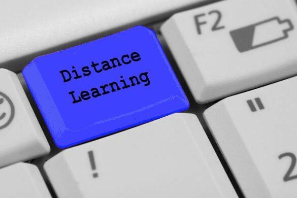 Dr. Ileana Berman Distance Learning
