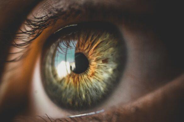 Dr. Ileana Berman eyes